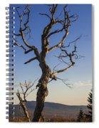Gathering Light Spiral Notebook