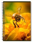 Gathering Pollen Triptych Spiral Notebook