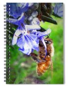 Gathering Rosemary Pollen Spiral Notebook