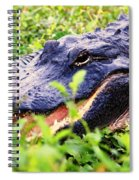 Gator 1 Spiral Notebook