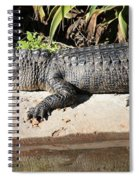 Gator Spiral Notebook