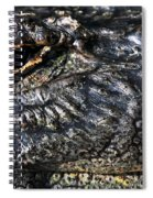 Gator Eye Spiral Notebook