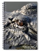 Gator Gaze Spiral Notebook