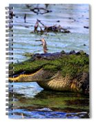 Gator Growl Spiral Notebook