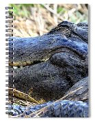 Gator Head Spiral Notebook