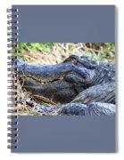 Gator Head Spiral Notebook