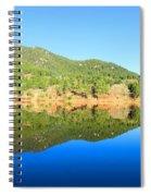 Gator Head Reflection Spiral Notebook