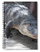 Gator On The Move Spiral Notebook