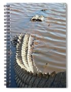 Gator Tail Spiral Notebook