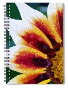 Gazania Flower Design Spiral Notebook