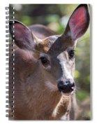Gaze Of Innocence Spiral Notebook