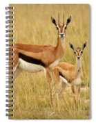 Gazelle Mother And Child Spiral Notebook