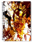 Gazing Into The Autumn Trees Spiral Notebook