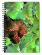 Gazing Up  Spiral Notebook
