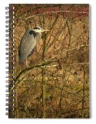 Gbh In A Tree Spiral Notebook