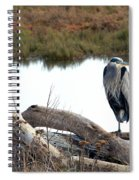 Gbh On Log Spiral Notebook