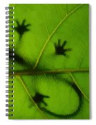 Gecko On A Leaf Spiral Notebook