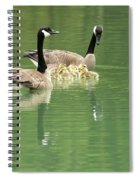 Geese And Babies Spiral Notebook