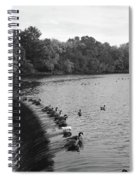 Ducks And Canada Geese On The Charles River Spiral Notebook