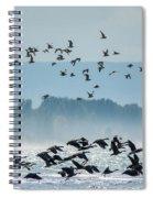 Geese And Gulls Spiral Notebook