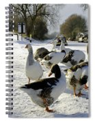 Geese At The Frozen Horninglow Basin Spiral Notebook