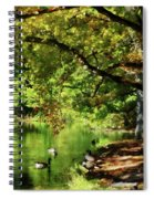 Geese By Pond In Autumn Spiral Notebook