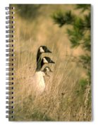 Geese In A Row Spiral Notebook