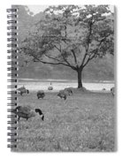 Geese On A Rainy Day Spiral Notebook