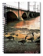 Geese On A Stroll Spiral Notebook