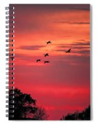 Geese On Their Sunset Arrival Spiral Notebook