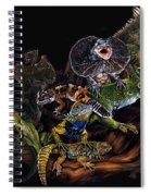 Gems And Jewels Spiral Notebook