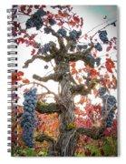 General Cluster Spiral Notebook