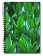 General Grant Meadow Spiral Notebook
