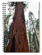 General Sherman Tree Portrait Spiral Notebook