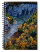 Genesee River Gorge II Spiral Notebook