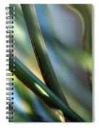 Gentle... Spiral Notebook