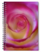 Gentle Curves Spiral Notebook