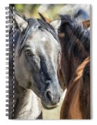 Gentle Face Of A Wild Horse Spiral Notebook