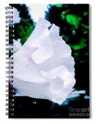 Gentle Floral Spiral Notebook