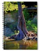Gentle Giant 122317-1 Spiral Notebook