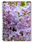 Gentle Purples Spiral Notebook