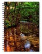 Gentle Stream Spiral Notebook