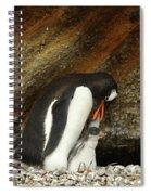 Gentoo Penguin Feeding Chicks Spiral Notebook