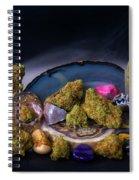 Geodetojoy2 Spiral Notebook