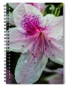 Geometric Beauty Spiral Notebook