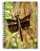 Georgia On My Mind Ray Charles Dragonfly Art Spiral Notebook
