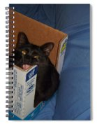 Gepptto The Cat Spiral Notebook