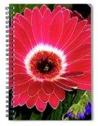 Gerbera Bella Spiral Notebook