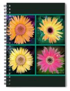 Gerbera Daisy Collage In Square Spiral Notebook