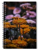 Gerbera Daisy Garden Spiral Notebook
